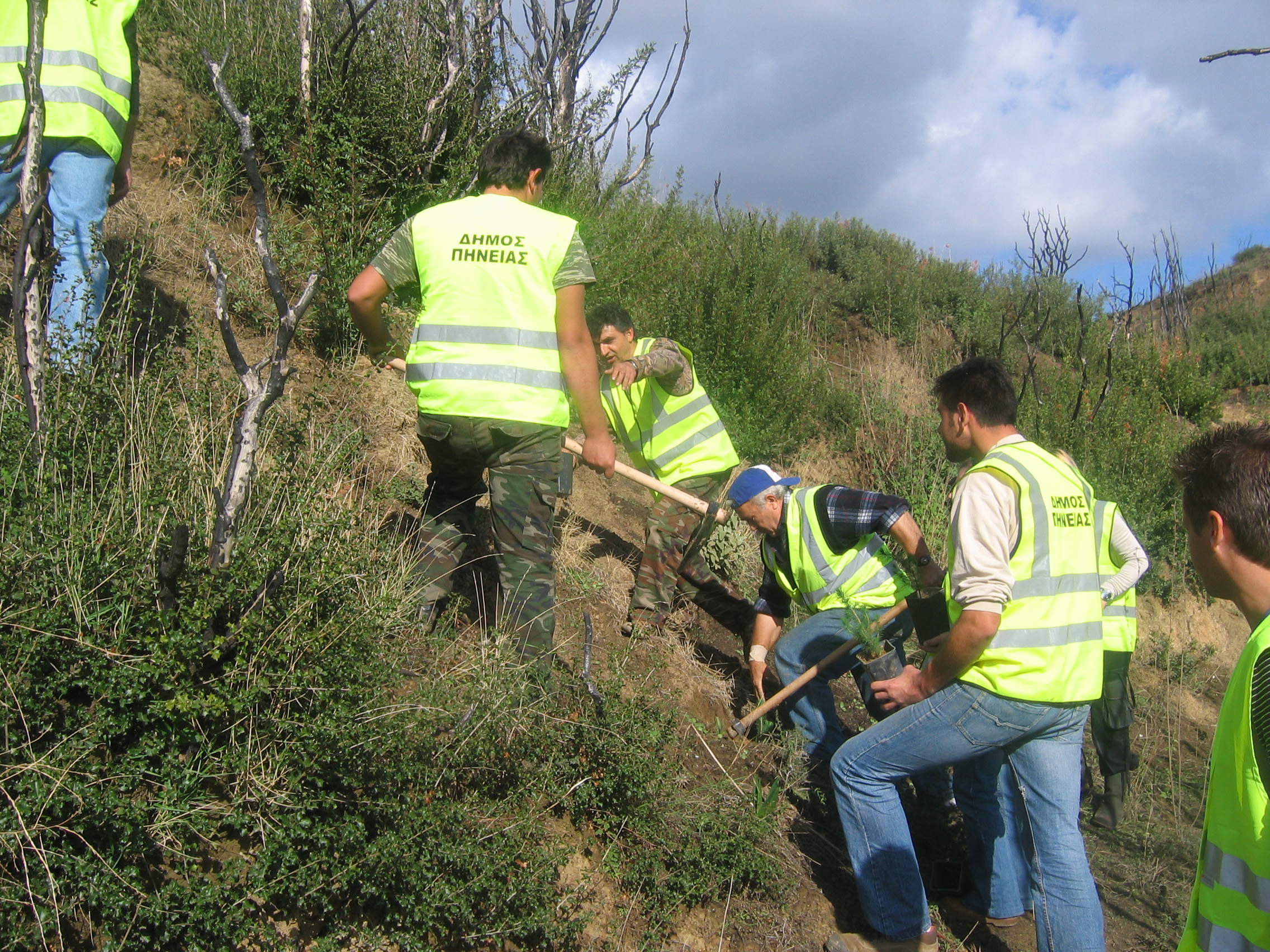 Tree planting at the burnt area with plants from donations TITAN City Pineias Greece